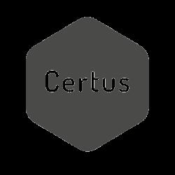 Bloczek fundamentowy Certus (pełna paleta)